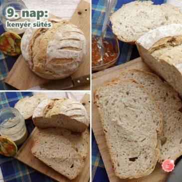 Kovász iskola – 9. nap: kovászos kenyér sütése